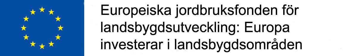 EU-lippu_ja_tunnuslause_svenska