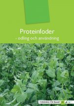 proteinfoder-480x695